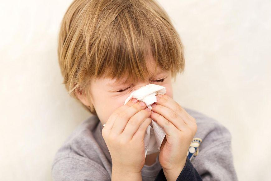 Bakterie - chorobotwórcze patogeny