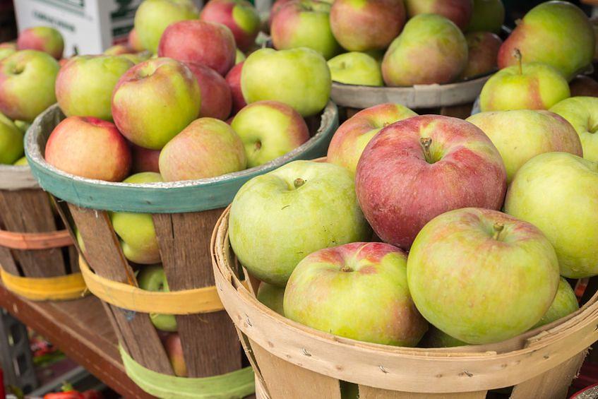 Jedzenie jabłek ma mnóstwo zalet