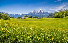 Ferie w górach - w Polsce czy za granicą? (WIDEO)