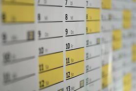 Kalendarz roku szkolnego 2021/2022. Lista dni wolnych od zajęć