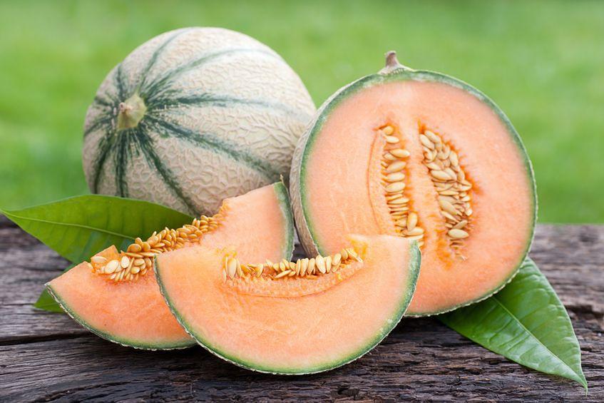 Melon - 101 punktów