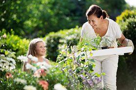 Bezpieczne zioła dla dzieci