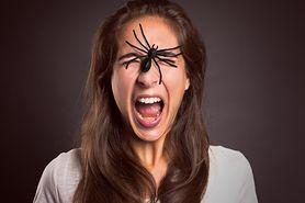 Zaburzenia lękowe – klasyfikacja, przyczyny, fobie, zespół stresu pourazowego, leczenie