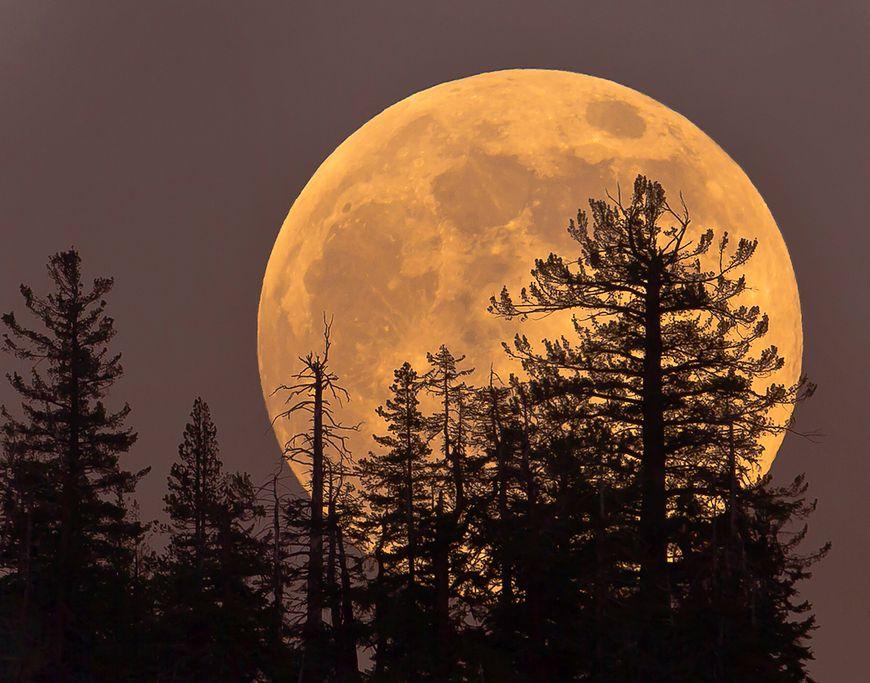 12.12.2019 - ostatnia pełnia Księżyca