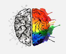 Niedobory, które rujnują pracę mózgu. Zobacz składniki niezbędne do prawidłowego funkcjonowania