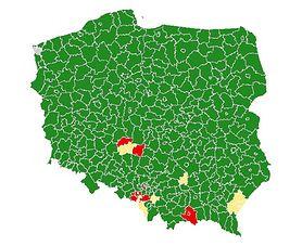 """Koronawirus w Polsce. Ministerstwo zaostrza restrykcje, wprowadza """"czerwone"""", """"żółte"""" i """"zielone"""" powiaty"""