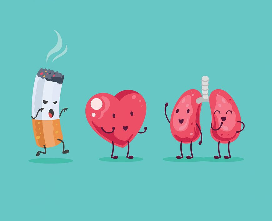 Nikotyna w organizmie człowieka