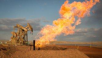Tąpnięcie na rynku ropy. Ceny najniższe od roku. Nawet polskie rafinerie zaczęły je obniżać