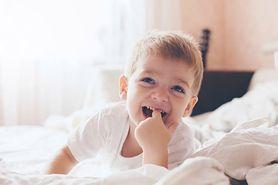 Jak zmienia się zachowanie dziecka od drugiego roku życia? (WIDEO)