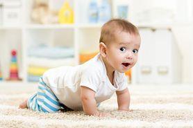 Raczkowanie niemowląt - kolejny kamień milowy twojego dziecka