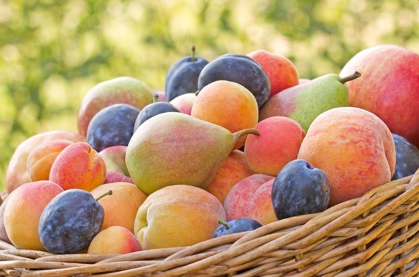 Jedzenie owoców i warzyw wpływa na odporność