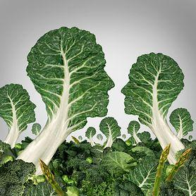 O wyższości warzyw nad mięsem, czyli co warto wiedzieć o wegetarianizmie?