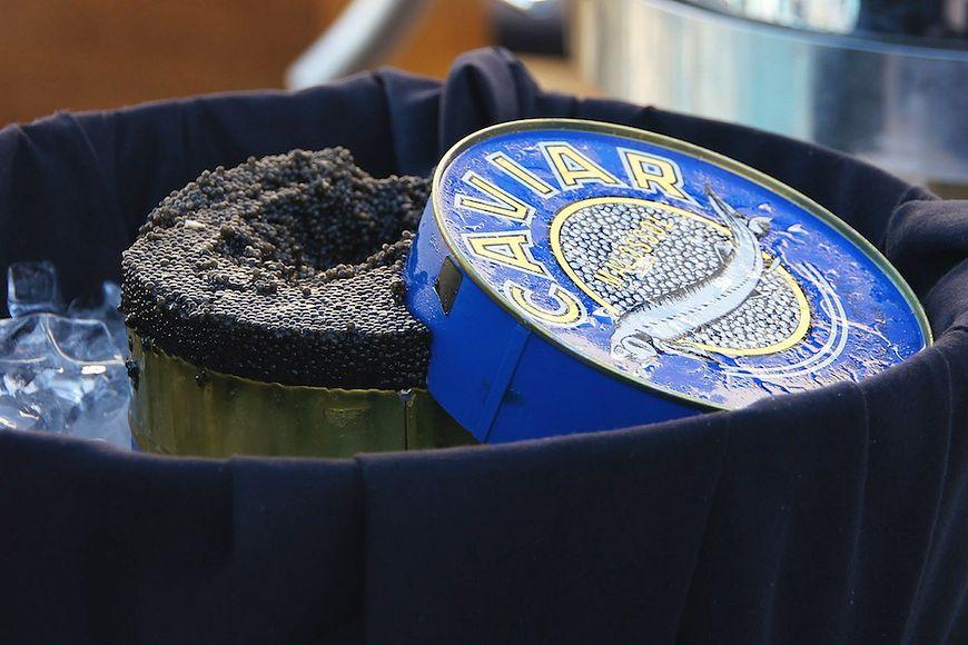 Kawior beluga - zakazany przysmak
