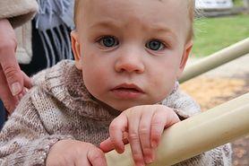Kiedy posłać dziecko do żłobka?