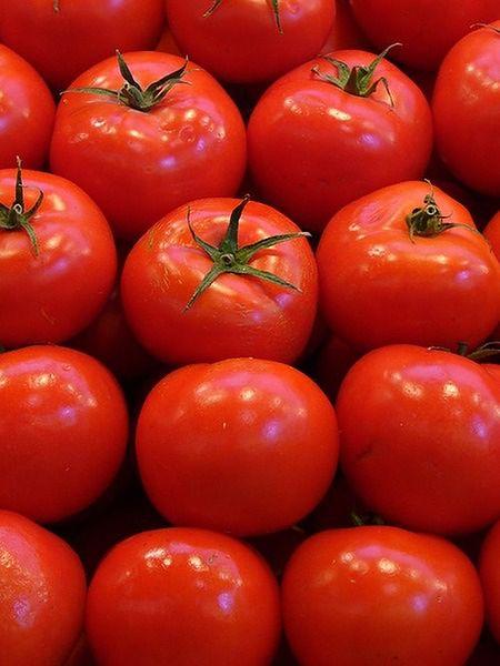 Jak kupić dobre pomidory?