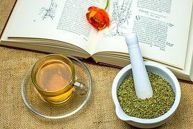 Herbata z czystka – charakterystyka, zdrowotne właściwości, zastosowanie, herbata z czystka, cena