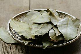 Wywar z liści laurowych na łupież, stawy i cukrzycę