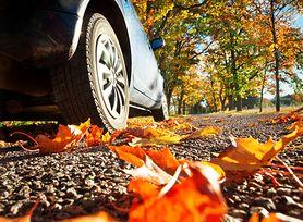 Bezpieczna jazda jesienią
