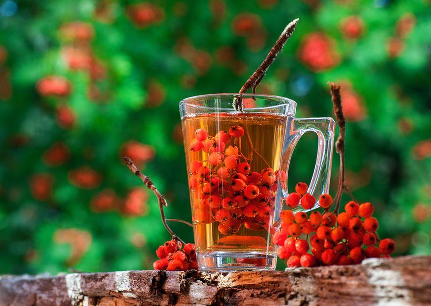 Jarzębinę dodawajmy do herbaty