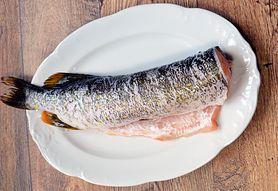 Szczupak – wygląd, występowanie i pomysły na dania