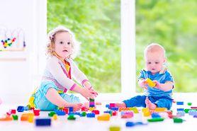 Zabawki dla malucha (1-3 lata) do 50 zł - redakcja poleca