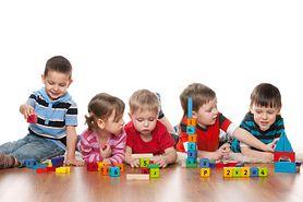 Zabawki edukacyjne dla malucha (1-3 lata) do 100 zł - redakcja poleca
