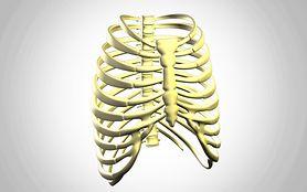 Sensacyjna operacja – wszczepienie tytanowego mostka i żeber z drukarki 3D
