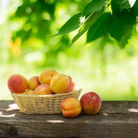 Dlaczego warto jeść brzoskwinie?