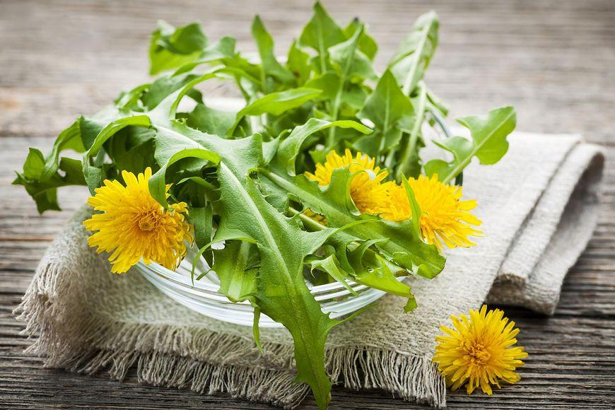Niektóre z roślin warto zebrać i cieszyć się ich leczniczymi właściwościami