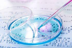 Co to są komórki macierzyste?