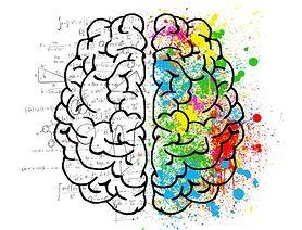 Dieta dla mózgu - charakterystyka diety MIND, zasady, przykładowe menu, suplementy diety dla mózgu. Jak żywieniowo poprawić koncentrację?