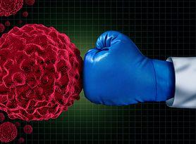 Na tropie walki z białaczką – nowe odkrycie polskich naukowców