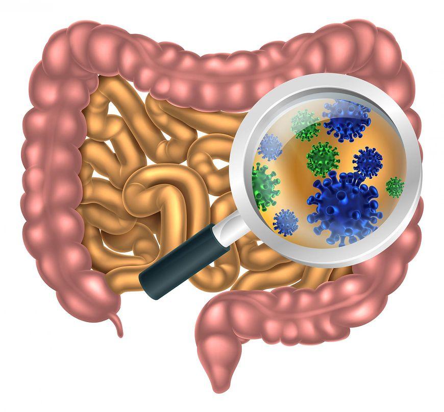 Zaburzenia mikroflory jelit mogą objawiać się bardzo różnie