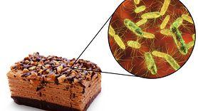 Błędy, które narażają na zakażenie salmonellą. Sprawdź, czy je popełniasz (WIDEO)