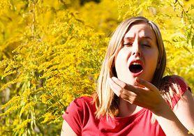 Alergia wziewna na pyłki traw