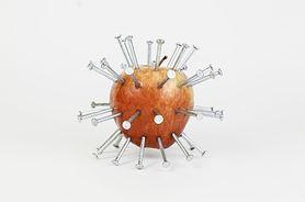 Gwoździe w jabłkach uzupełnią poziom żelaza? Niebezpieczny trend, któremu nie można ufać