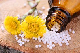 Karaluch, muchomor pospolity... Sprawdź, co skrywają w sobie leki homeopatyczne!