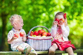 Sfermentowane jabłka w cynamonie – idealna przekąska dla najmłodszych