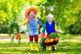 Najzdrowsze jesienne owoce i warzywa, które warto podawać dzieciom