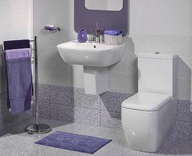Uczymy dobrych nawyków – dokładne sprzątanie łazienki i toalety