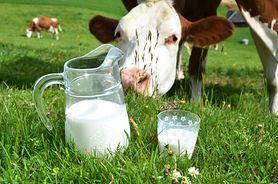 Organiczne mleko i mięso ma więcej kwasów omega-3