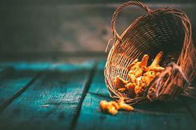Grzyby jadalne - gatunki, wartości odżywcze, alergia na grzyby