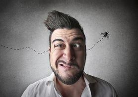 Czy znasz te metody łagodzenia ukąszeń owadów?
