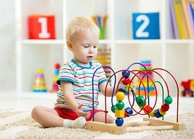 Zabawki edukacyjne dla malucha (1-3 lata) powyżej 100 zł - redakcja poleca