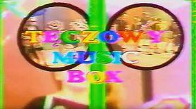 Seksualizacja dzieci w teledyskach Tęczowego Music Boxu nie miała miejsca. Ekspert wyjaśnia