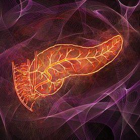 Sekretyna - czym jest i jakie pełni funkcje w organizmie