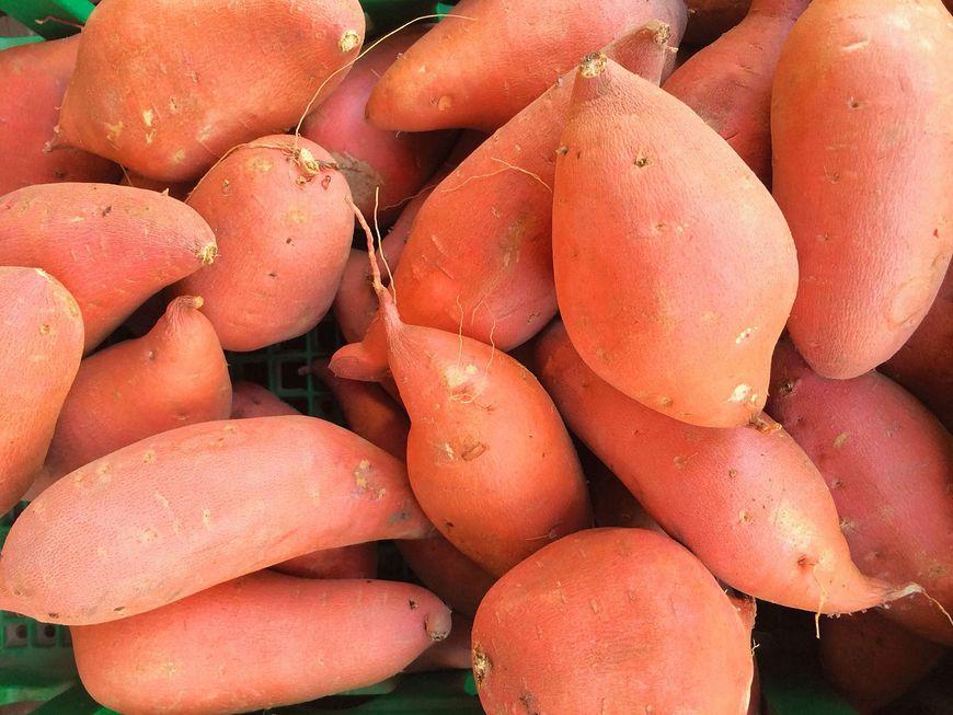Bataty i ziemniaki a zdrowie