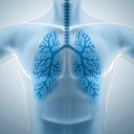 Produkty oczyszczające płuca. Ochronią przed rakiem