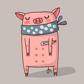 Świnka - choroba zakaźna. Objawy, przebieg, leczenie