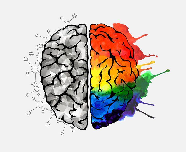 Prawidłowa praca mózgu jest zależna od dostarczenia odpowiednich ilości witamin i minerałów